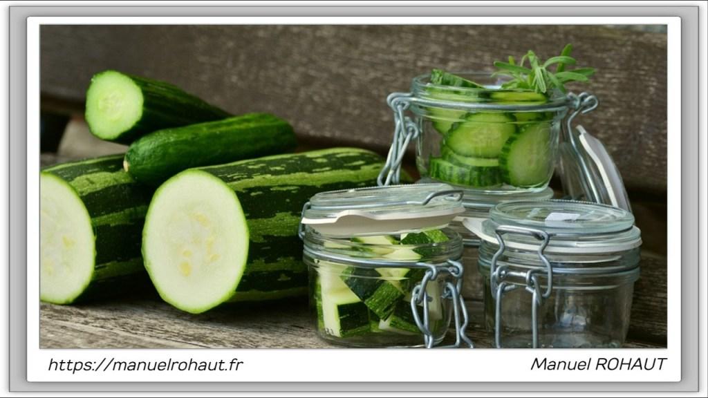 Recette Beautysané© : le gratin de courgettes du jardin