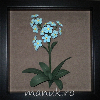Quilled Forget Me Not Flowers in a Shadowbox Frame