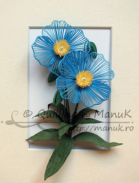 Quilled Blue Poppy (Meconopsis)