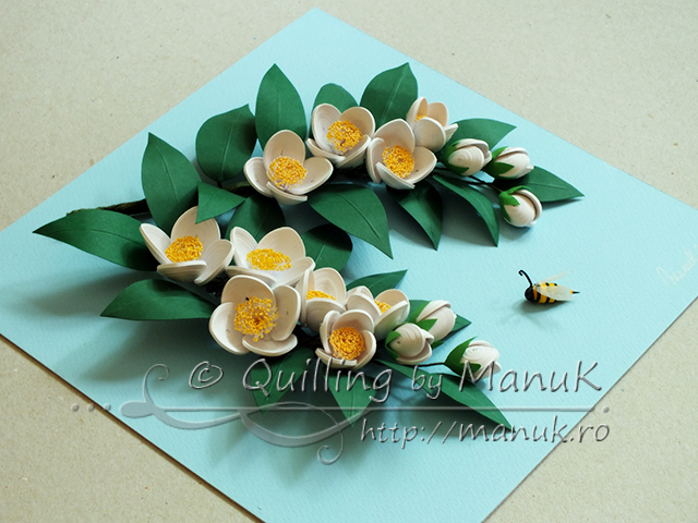 Quilled Jasmine Flowers in a Shadowbox Frame