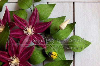 Quilled Clematis Flowers - Detail