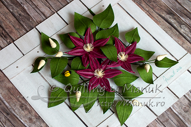 Quilled Clematis Flowers