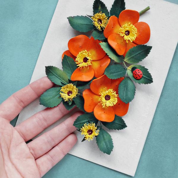 Rosa Foetida Bicolor