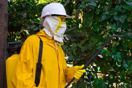 maryland pesticides, neonicotinoids,