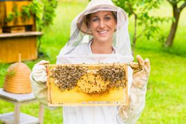 honey bees, beekeeping, Honey Queen