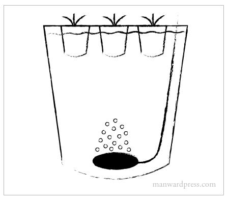Indoor Lighting For Plants Self Watering Planters For