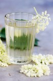 42433163 - kvass from elder flowers in a glass