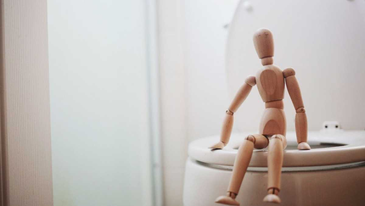 How to Talk about Going to the Toilet in English How to Talk about Defecating in English