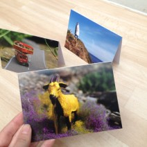 Art and Greetings Cards