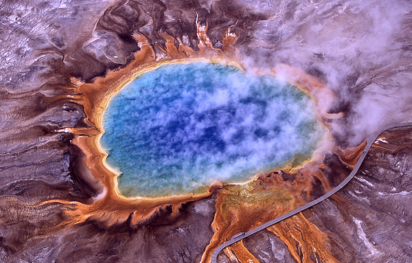 A thermophile, such those living in hot springs like this one from Yellowstone National Park, is an organism that thrives at relatively high temperatures 106 and 252 °F).