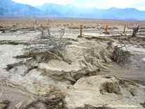 Evidence of erosion at Manzanar National Historic Site.