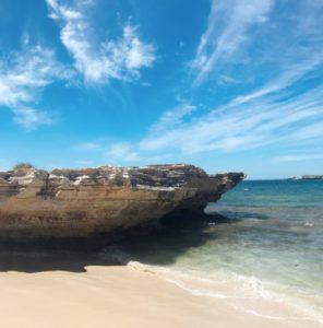 ロットネスト島海