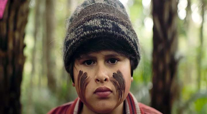 Submissions 2018 - Films from the 2017 Māoriland Film Festival, Hunt For The Wilderpeople by Taika Waititi