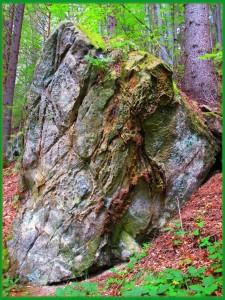 На цьому камені, як твердить волхв Ніколае, викладена вся історія святилища Симаргла