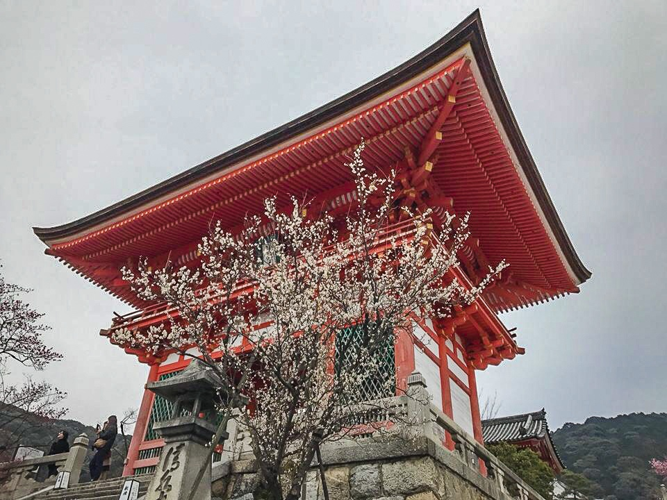 Kiyomizu temple in Japan