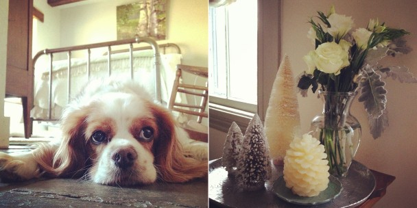 December Instagram Photos