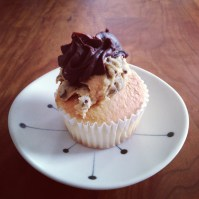 Cupcakes from Nothing Bakes Like a Parrott