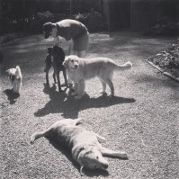 Michael and the dogs