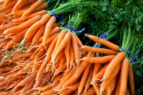 Farmers Market Portland Maine