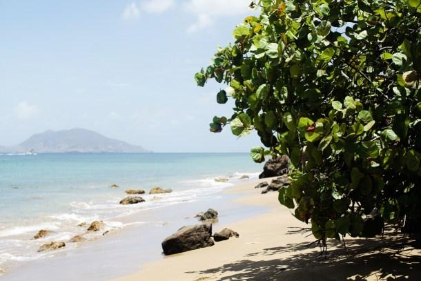 Montpelier Plantation Beach Nevis