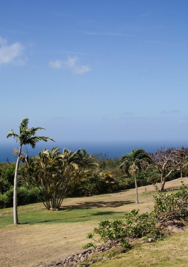 Nevis Caribbean