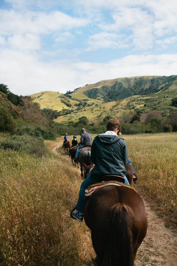 Big Sur Horseback Rides