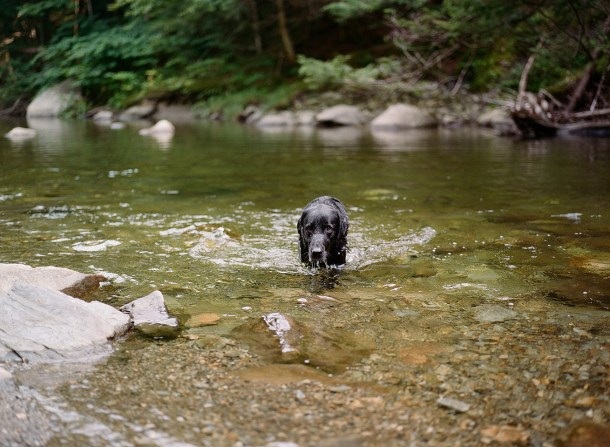Orvis at Stowe
