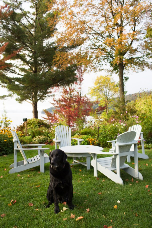 Dogs at Manoir Hovey Hotel Tour on Map & Menu