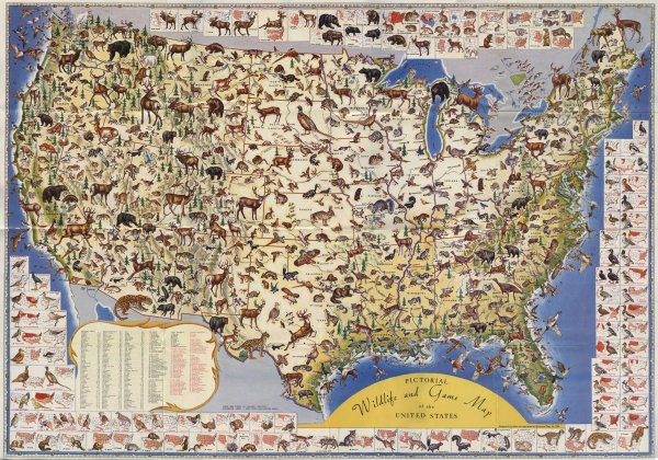 America Map Collection
