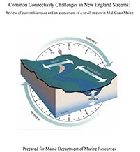 MDMR White Paper Ecological Assessment