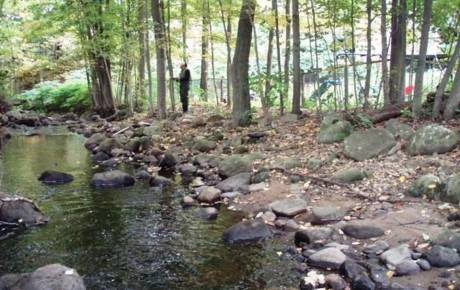 Beaver Brook Habitat Assessment and Mapping support