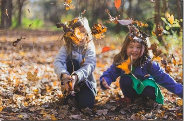 Nature Based Education