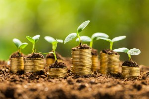 Getting growth from your money