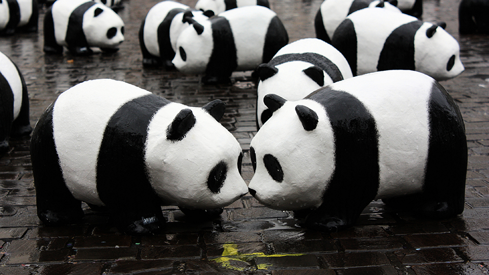 News Bits: Pandas Could Be the New Dinosaurs via @maphappy