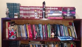 minha-biblioteca-mapinguanerd