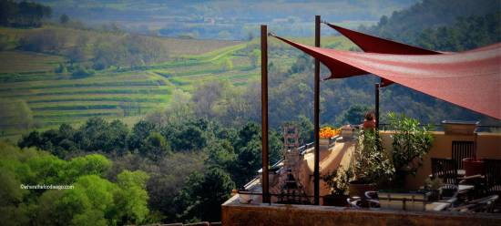 roussillon19 - where the foodies go