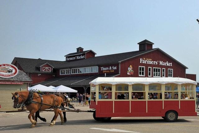 St. Jacobs Farmers Market Ontario Horse drawn Wagon