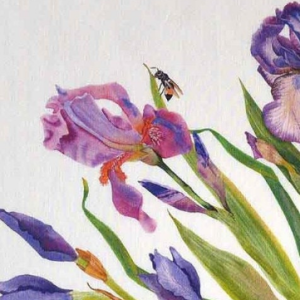 Linen Napkins Irises detail