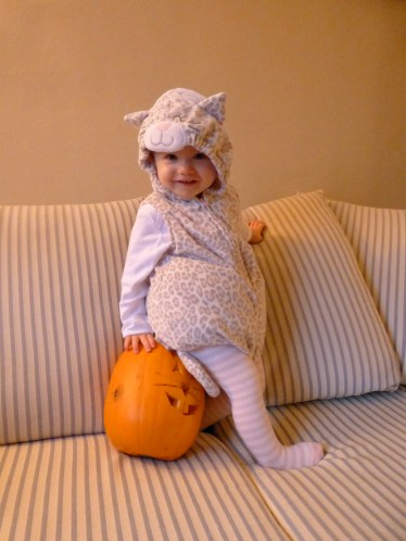 Audrey the cat with a bunny pumpkin