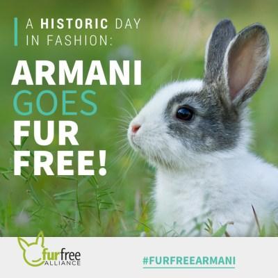 meme-fur-free-armani