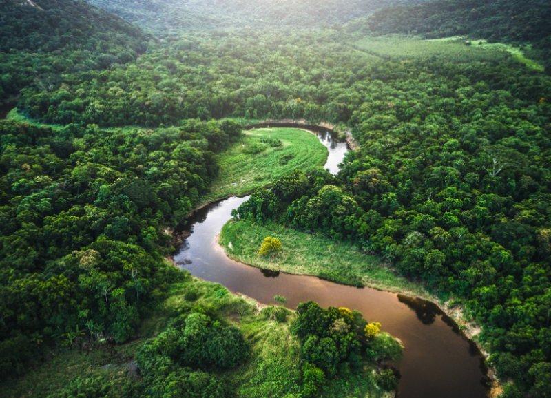 ACT 4 AMAZONIA