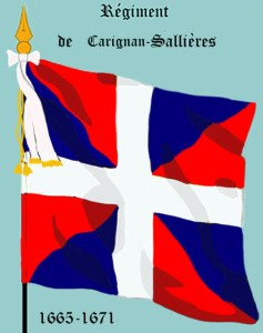C-S Regimental flag