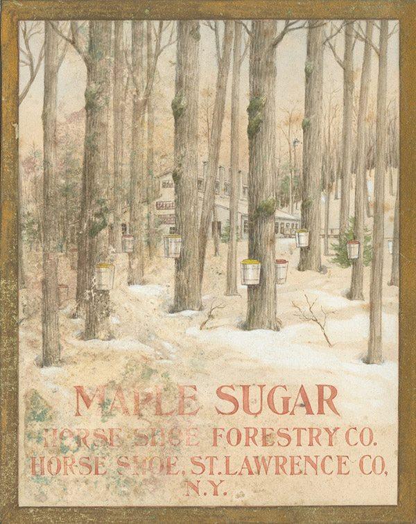Vermont Maple Syrup Tap Spout W/ Vintage Labels New St Albans Vermont Sugarmaker Collectibles