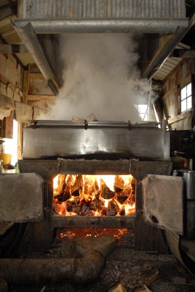 Wood Fired Evaporator