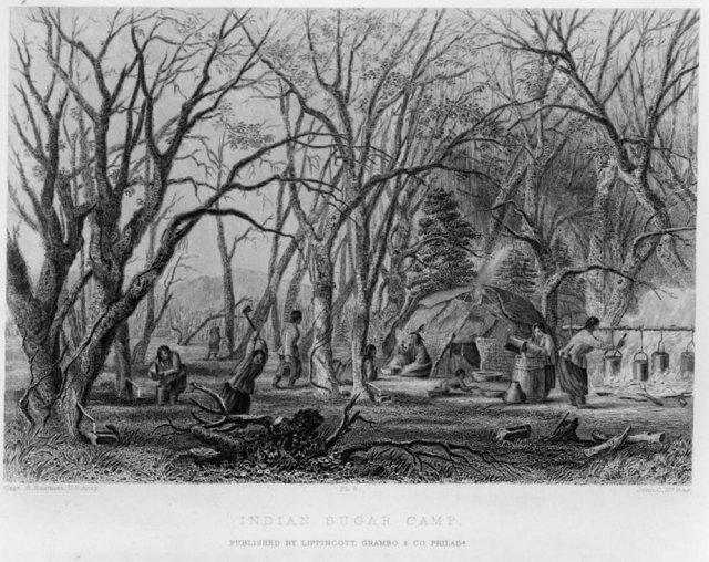 """Indian sugar camp / Capt. S. Eastman, U.S. Army"" ; John C. McRae.; McRae, John C., engraver; 1853; courtesy of Library of Congress"