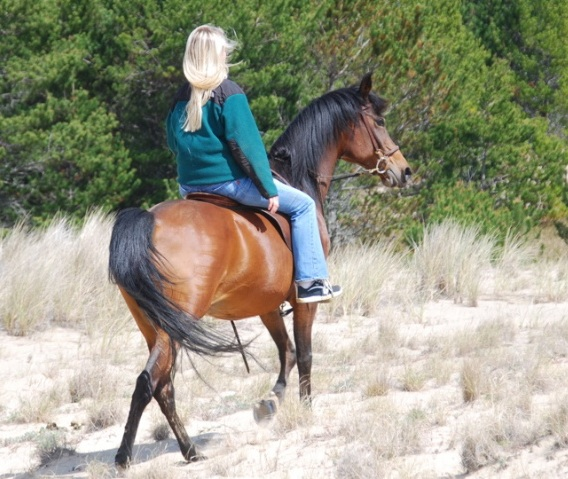 Caitlin Sause and Romantykk in the dunes.