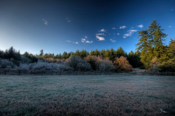 Frozen fields.