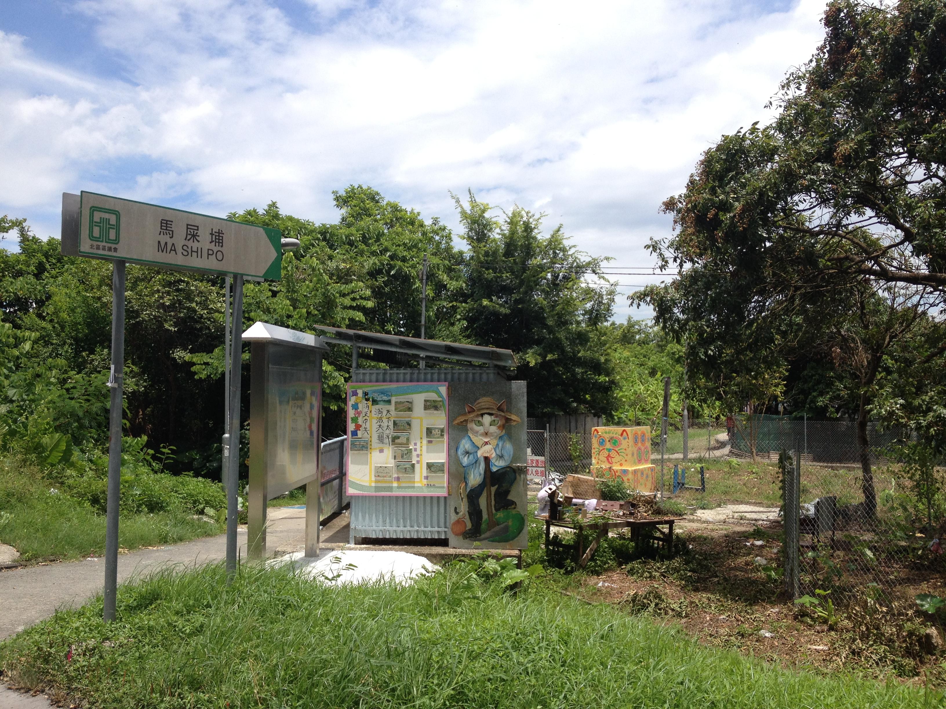 尋找馬寶寶|where? | 馬寶寶社區農場 Mapopo Community Farm