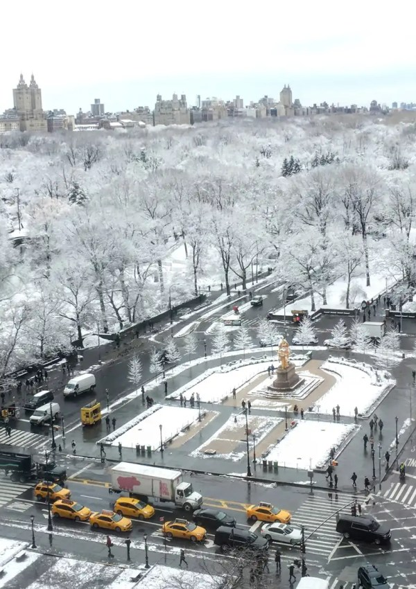 view of Central Park during the holidays in New York City