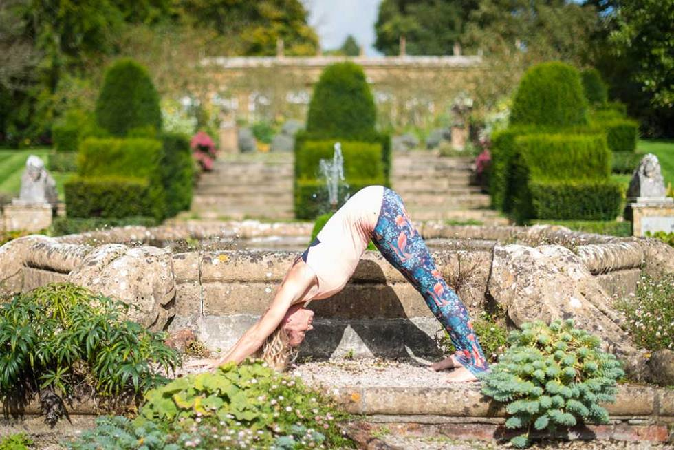 Downward Dog - the best yoga poses for your wedding day
